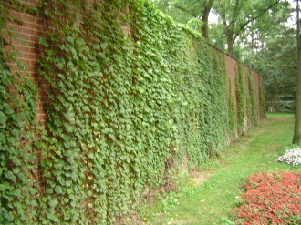Forbes Field wall in Pittsburgh.